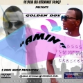 GOLDEN BOY  - IRE NITEMI