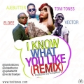 Toni Tones - I know What You Like (Remix) ft. Vector, ELDee & Ajebutter