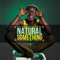 Sound Sultan - Natural Something